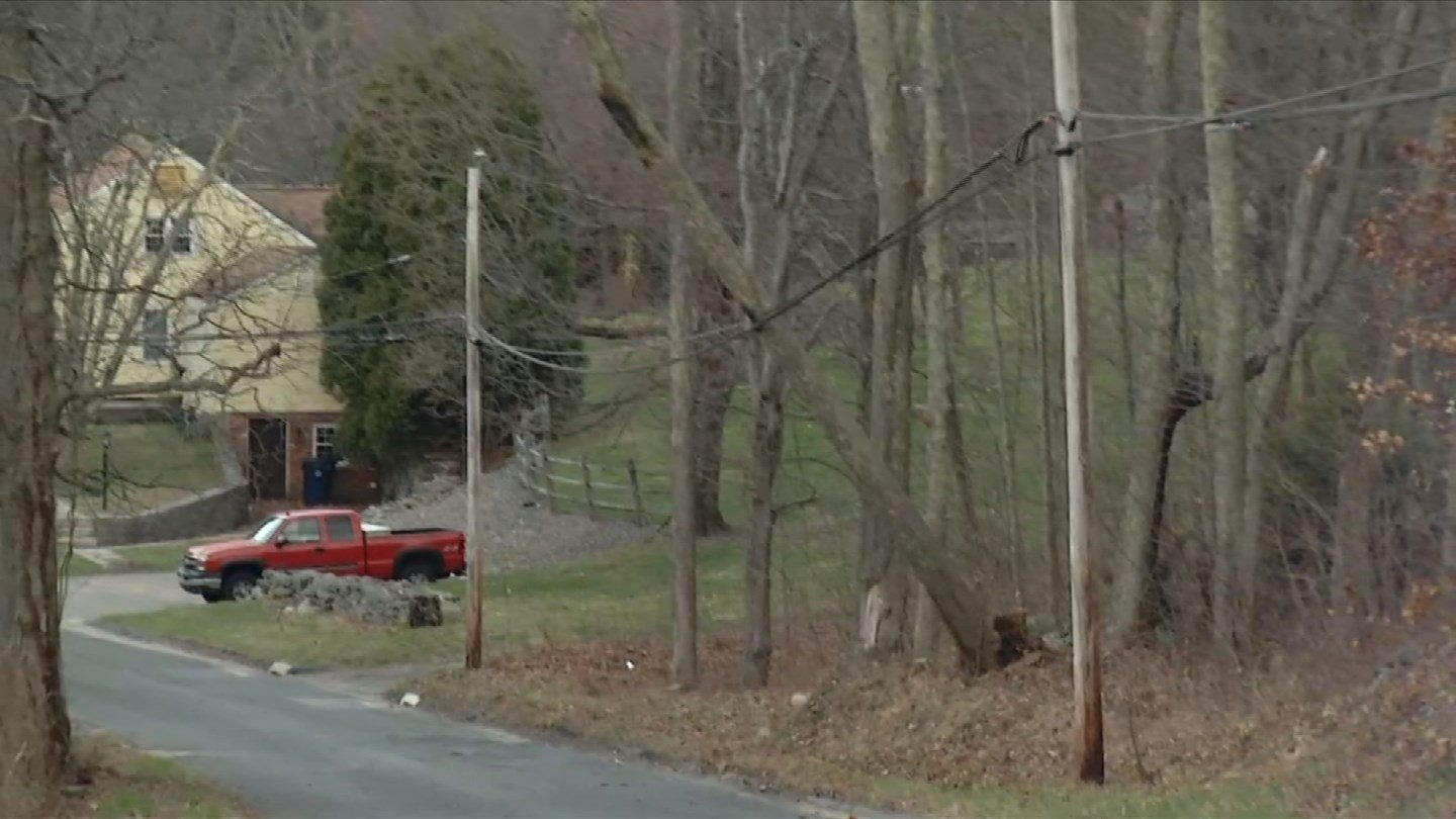 A tree leaned on a wire on Minor Road in Plymouth Tuesday morning. (WFSB photo)