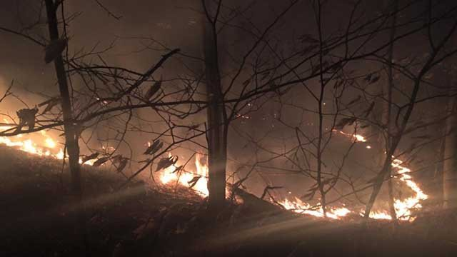Crews responded to a brush fire on Cedar Mountain in Newington on Wednesday evening. (Newington Volunteer Fire Department)