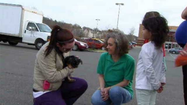 After seeing the story on Channel 3, a woman gave a new puppy to the family who lost their dog in a recent attack. (WFSB)