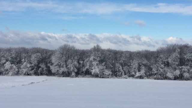 Snowfall in Tolland (Meggan Evans)