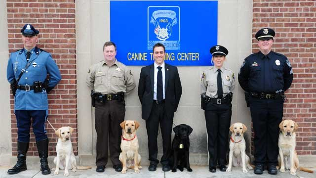 On Friday, five Labrador retrievers and their handlers graduated from the Electronic Storage Detection class. (CT State Police)