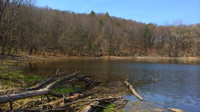 Here's view of Great Pond from platform (WFSB)