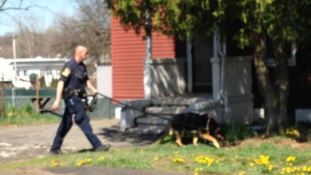 State Police K9 assisting in search of neighborhood after thee men rob West Haven Post Office on Farwell Street. (WFSB)