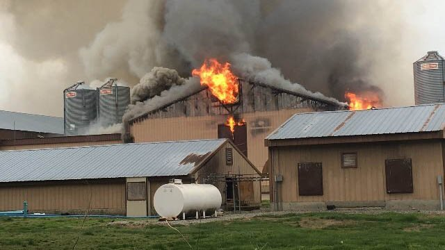 A fire erupted at the KofKoff Egg Farm in Lebanon on Tuesday. (iWitness photo)