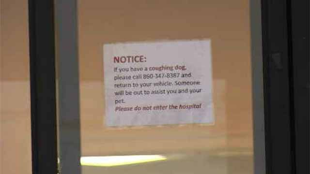 There is a sign on the door that warns pet owners not to bring their dog directly inside if they suspect they have a respiratory infection, because it is contagious. (WFSB)