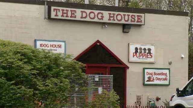 A Manchester woman said a local pet shop known as The Dog House sold her a sick puppy, and won't pay her back for the veterinarian bills. (WFSB)