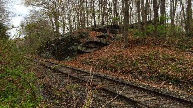 Railroad that runs through preserve