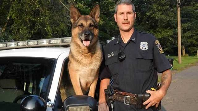 Cesare, served beside now-retired Officer John Battick from 2003 to 2012. (Hamden Police)