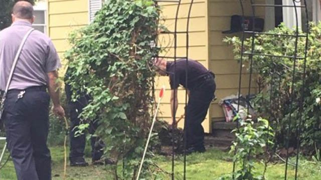 Milford firefighters helped clean up a veteran's yard on Memorial Day after his wife had to be taken to the hospital. (Milford Fire Dept. photo)
