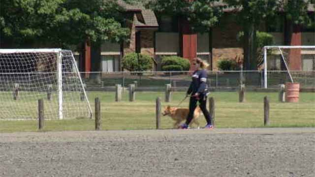 Town officials are mulling the possibility of a dog park at Norton Park. (WFSB)