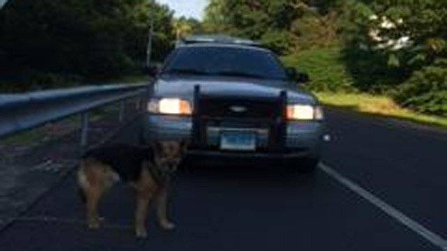 (State police photo)
