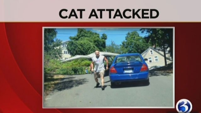 Brian Casson was arrested after he abused a cat on a bridge in Waterbury. (WFSB)