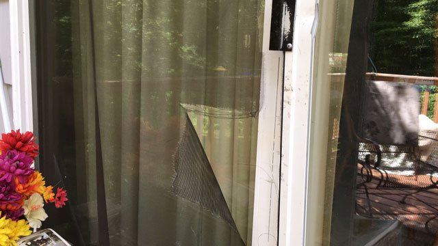 Eyewitness News will have more after a bear tried to get into a home in Barkhamsted. (WFSB)
