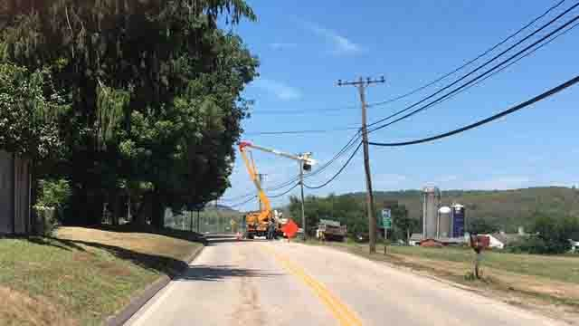 Crews work to clean up after a tree fell onto wires in Lyme. (WFSB)