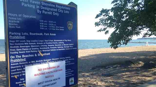 No swimming at West Haven beaches after black algae found. (WFSB)