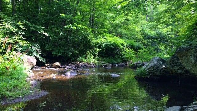 River bend inside Bethlehem preserve