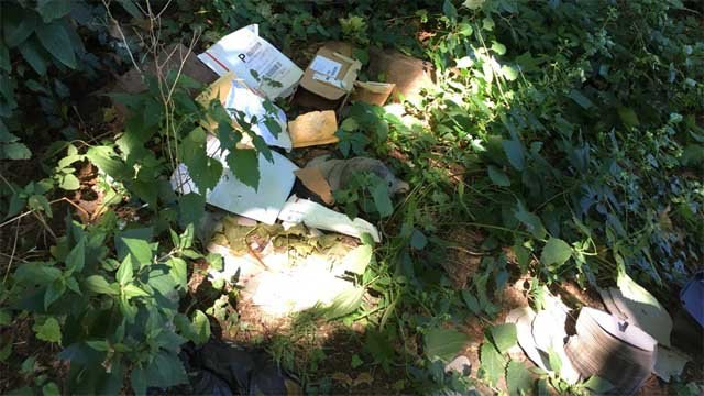 Remnants of stolen packages are being tossed into the woods in New Haven. (WFSB)