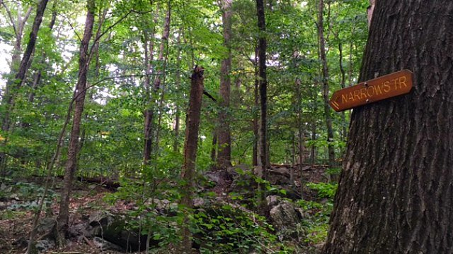 Web of trails inside 70-acre parcel
