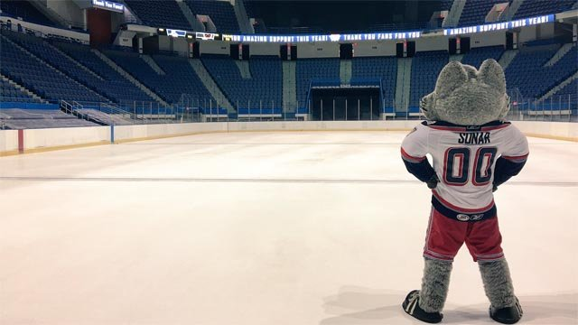 Fans are gearing up for a new season with the Wolf Pack (WFSB)