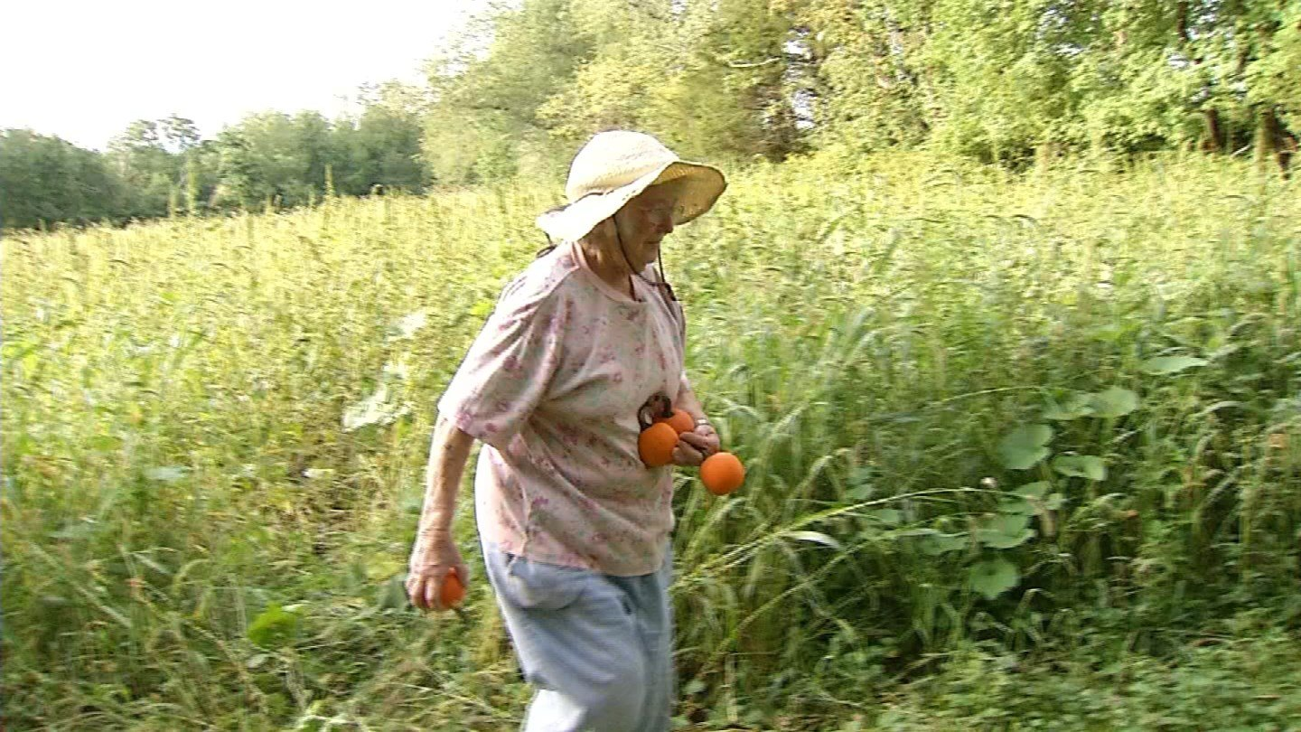 Teddy Randall said someone stole more than 100 pumpkins from her Lebanon farm. (WFSB photo)