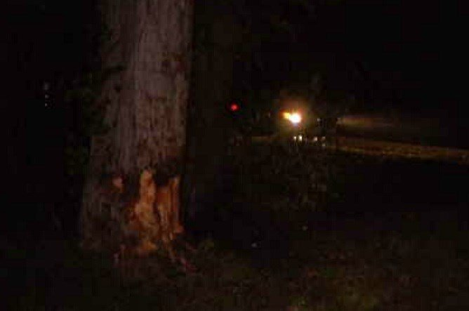 Damage left on a tree following a deadly crash in Old Saybrook.  (WFSB)