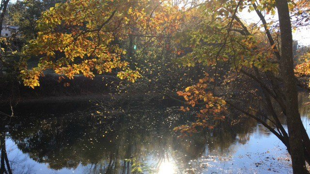 Hikers can access the Farmington River via the red trail.