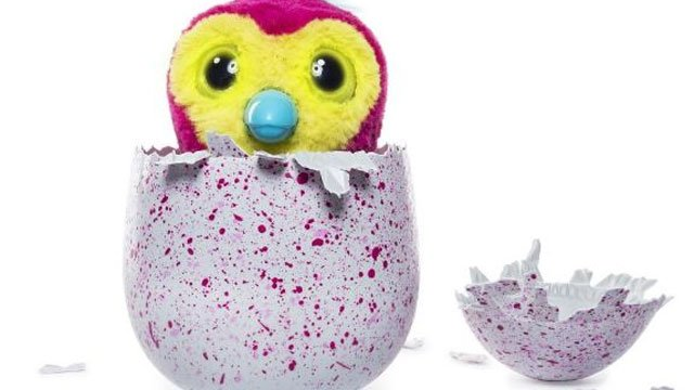 Hatchimals are sold out all across the state, but Eyewitness News has learned that more are on their way to Connecticut.  (WFSB)