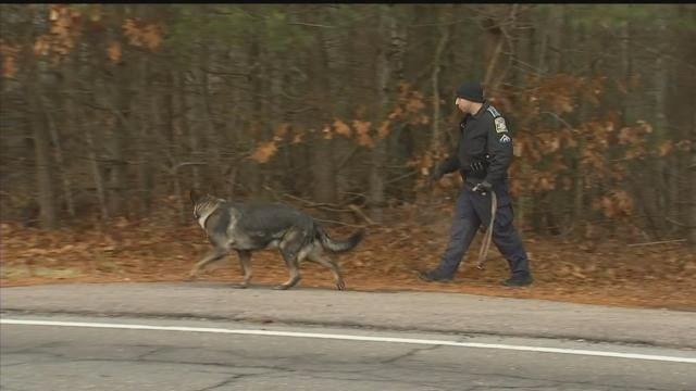 State police used K9s to investigate two separate burglary reports in Ellington. (WFSB photo)