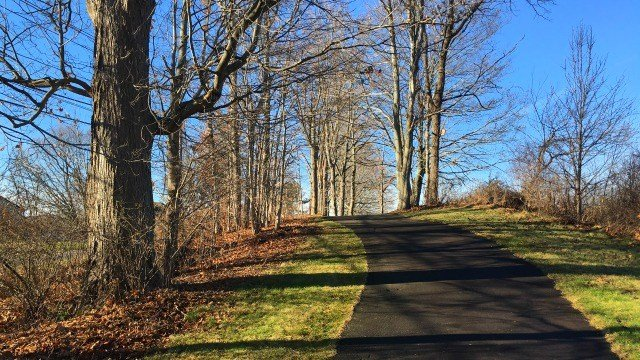 Old golf cart paths now serve as walking trails
