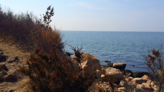 Bluff Point in Groton is a must for those exploring the CT shoreline.