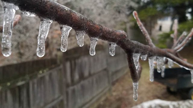 Ice in Warren. (TJ/iWItness photo)