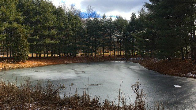 Pond on the grounds of Earle Park