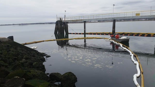 Booms are in place in New Haven Harbor to catch home heating oil that had been leaking. (DEEP photo)