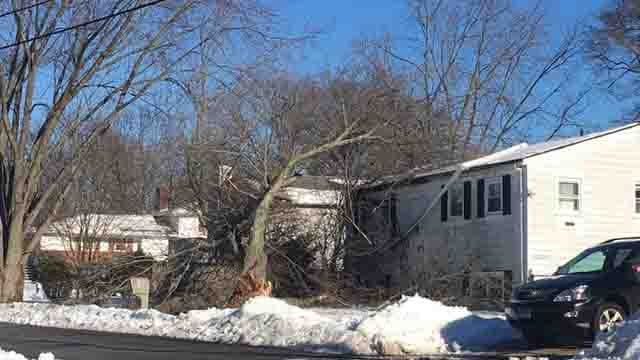 A tree toppled onto a home in West Haven on Monday (WFSB)