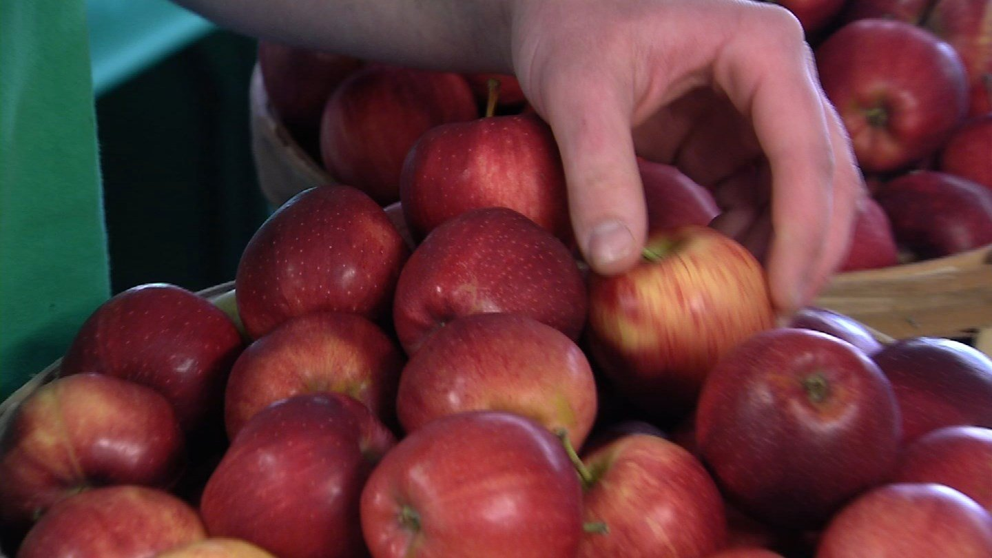 The drought affected Rogers Orchards apple crop this past fall. (WFSB photo)