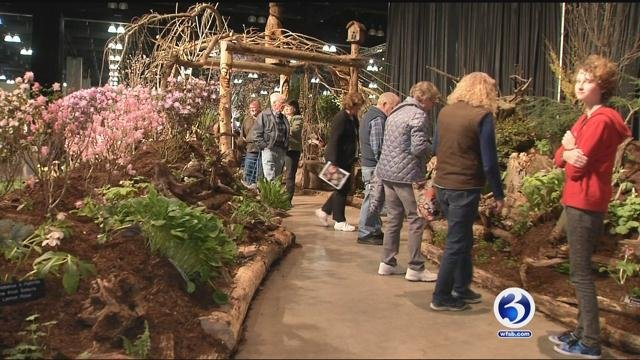 Ct Flower Show Comes To Hartford This Weekend Wfsb 3 Connecticut