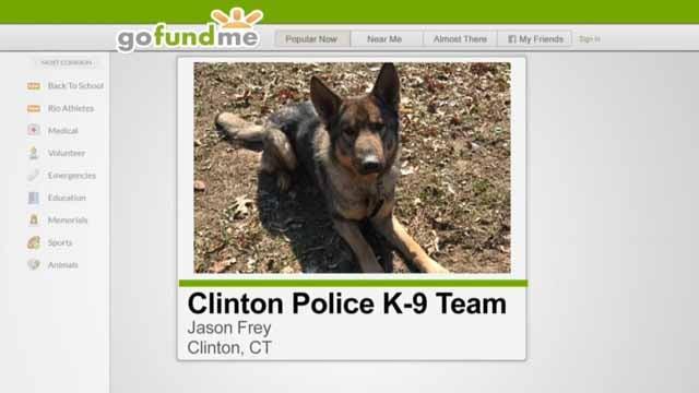 Clinton police hope to raise enough money for a K9 program (GoFundMe)
