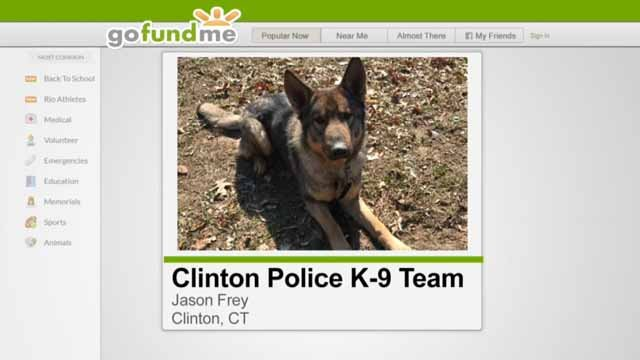 Clinton police hope to raise enough money for a K9 program (GoFundMe)