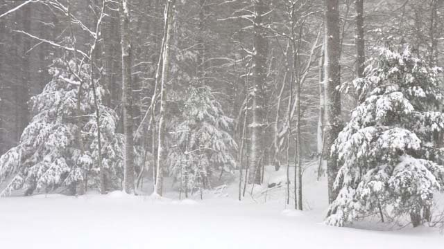 Blizzard Eugene dumped at least 13 inches in Tolland (WFSB)