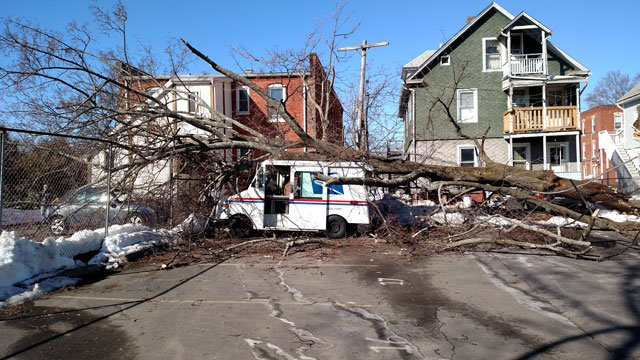 A tree was also down at the Bristol Post Office.