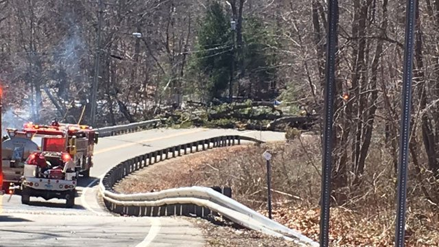 """Route 156 in Old Lyme was shut down near Point O' Woods for """"several hours"""" because of down power lines. (WFSB)"""
