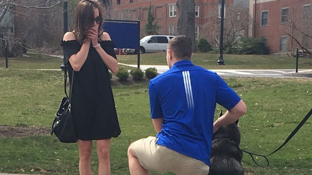 Daniel Bronko proposed to Holly Elizabeth  with the help of Jonathan the Husky. (UConn)