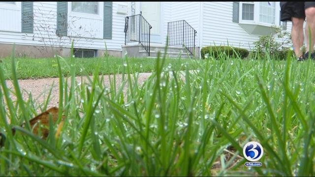 A CT woman was warned after her children were playing on the grass (WFSB)