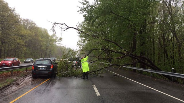 Part of the Meritt Parkway in Wallingford is closed because of downed tree branches. (CT State Police)