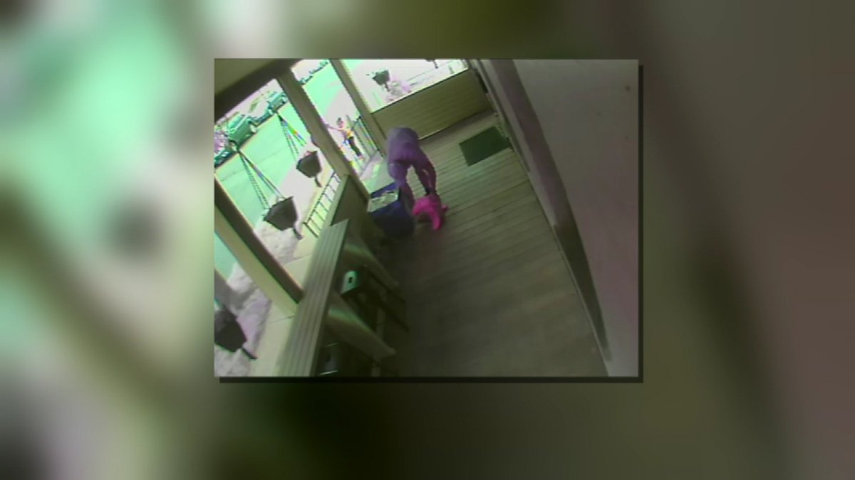 A thief was caught on camera snatching a package from a home (submitted video)