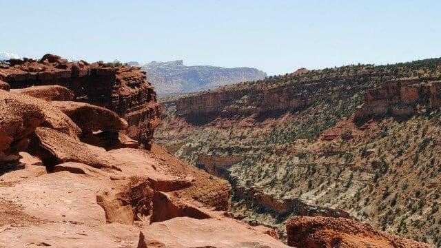 View from Goosenecks Overlook