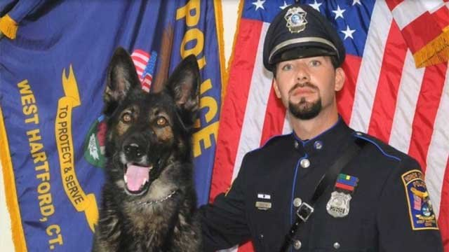 K9 Reign and his partner Detective Rosario Savastra spent many years together (West Hartford Police Department)