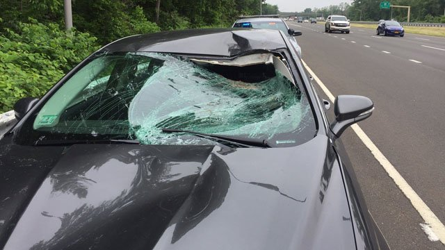 State police said a car collided with a deer on I-91 north in North Haven on Monday. (State police photo)