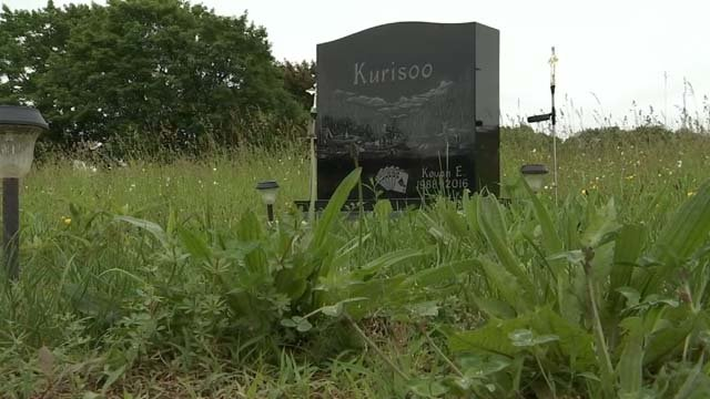 A mother says someone stole a statue from her son's grave (WFSB)
