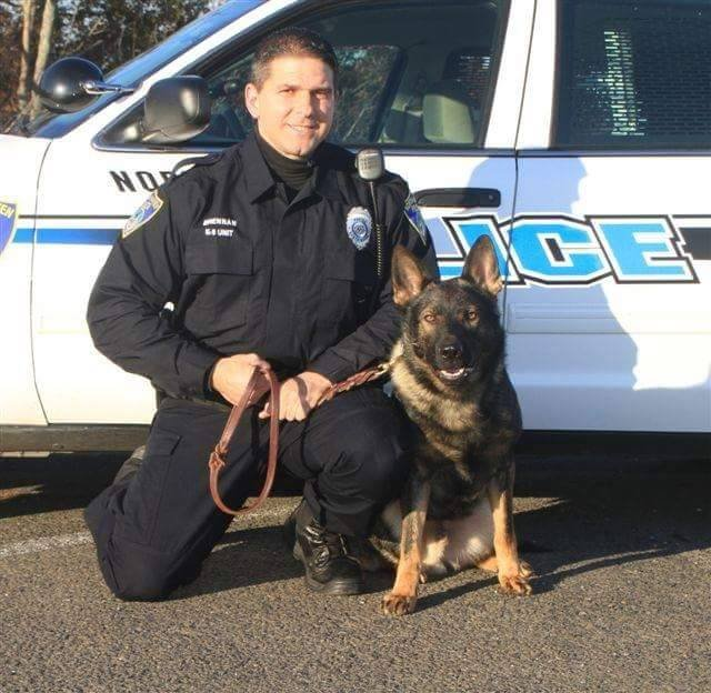 K-9 Zeus of the North Haven Police Department who passed away recently.  (North Haven Police Department Facebook page)